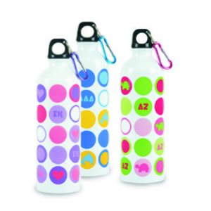 Stainless Water Bottle 1012